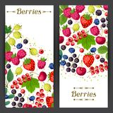 Nature banners design with berries. Nature banners design with stylized fresh berries Royalty Free Stock Images
