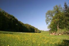 Nature bavaroise Image libre de droits