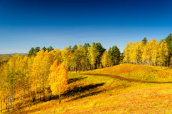 Beautiful autumn landscape. Fall season Royalty Free Stock Photo