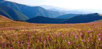 Nature, beautiful  landscape in Carpathian mountains Stock Image