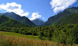 The nature and beauty of the caucasus. Teberda reserve in the Karachay urban district of Karachay-Cherkessia. Photo taken on: July 27 Saturday, 2013 Royalty Free Stock Photos