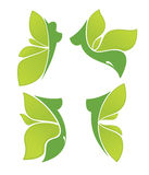 Nature beauty. Green women, collection of nature spa and beauty symbols Royalty Free Stock Photos