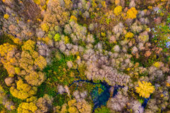 Nature beauty in Lithuania Stock Photo
