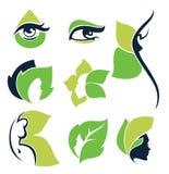 Nature beauty Stock Image