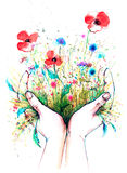 Nature. Blossoming summer meadow in human hands Stock Photography