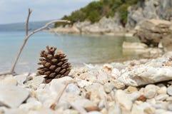 Nature. Blue sea and white stones Stock Photos