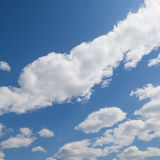 Nature. Blue sky in background Royalty Free Stock Photography