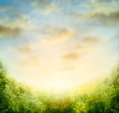 Nature blurred background with sky and green bushes Royalty Free Stock Image
