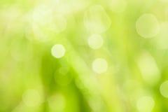Nature blurry background Stock Photo