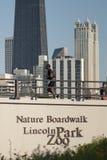 Nature Boardwalk Royalty Free Stock Photos