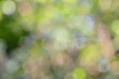 Nature Bokeh background Royalty Free Stock Images