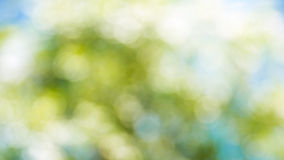 Nature Bokeh,blurred bokeh. Royalty Free Stock Photos