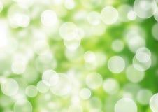 Nature bokeh lights Royalty Free Stock Image