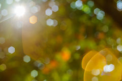 Nature bokeh and sun light flair. Royalty Free Stock Photography