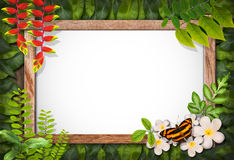Nature border with flower and green leaf Stock Photos