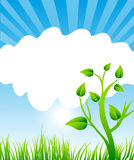 Nature Border Frame. Abstract nature background & frame with green grass,tree and clouds Royalty Free Stock Photos