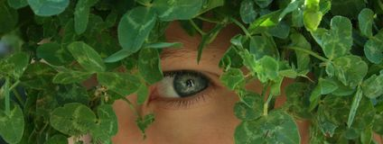 Nature Boy. Close-up of a young boy camouflaged with greenery Stock Photography