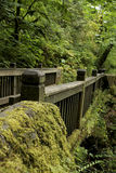 Nature Bridge. A bridge leading to a beautiful waterfall in Oregon stock photography