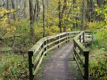 Nature Bridge. The Peacefully quiet bridge in the woods Stock Images