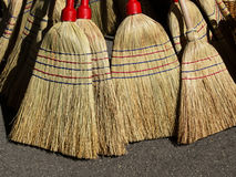 Nature brooms Stock Photo