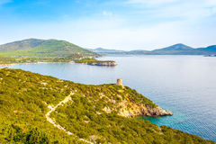 Nature Caccia cape and watchtower Punta Del Bollo in Sardinia Royalty Free Stock Image