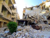 Homs city in Syria. Nature can give us hope in spite of all the devastation royalty free stock photography