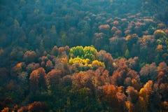Nature canvas Stock Photos