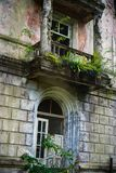 Nature captures the ruined house. House abandoned by people. Tkvarcheli.  royalty free stock images