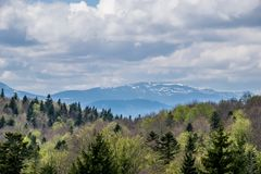 Nature of Carpathian Mountains in spring. Snowy peaks of the Carpathian Mountains. Natural landscape with awaking colors of forest in the front. Ivano-Frankivsk royalty free stock images