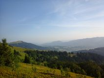 Nature of Carpathians Stock Photos
