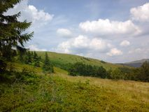 Nature of Carpathians Royalty Free Stock Images