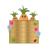 Nature cartel with cartoon carrots. Wooden cartel  with funny carrot ,symbol of nature and wellness Royalty Free Stock Photos
