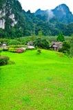 Nature chez KhaoSok, Thaïlande Photographie stock libre de droits