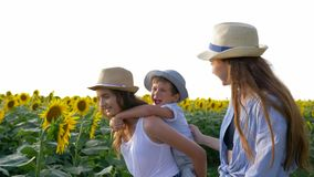 Nature and children, sisters with younger brother walk around the field with sunflowers and enjoy the fresh air in slow. Nature and children, sisters with a stock video footage