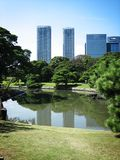 Nature in the city. Park in central Tokyo stock image