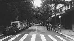The Nature City. Avenida Paulista - São Paulo - SP - Brasil Stock Image