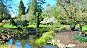 Nature in the City: Bright scenery of Queen Elizabeth Park Garden, Vancouver, 2018 royalty free stock images