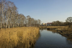 Nature in the city spring, Ukraine. River in the city of Ternopil and nature spring Stock Photography
