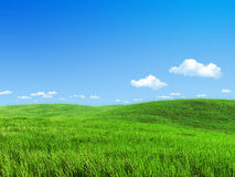 Nature collection - Green meadow template Stock Photo