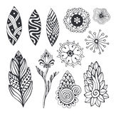 Nature collection in zentangle style. Hand drawn vector set with doodle flowers and leaves. For coloring page, stickers Stock Image