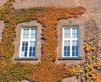 Nature combined with the beauty of the Wawel Castle stock photo