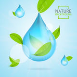 Nature Concept Transparent Purity Drop Water and Fly Green Leaves. Vector Royalty Free Stock Images