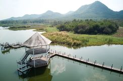 Nature conservation centre hua hin thaialnd royalty free stock photo
