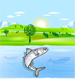 Nature conservation and fish. Nature conservation and jump fish Royalty Free Stock Image