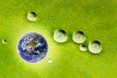 Nature conservation- glowing earth & water drops. Concept of sustainable development, ecological conservation, protection of nature showing image of glowing Stock Images