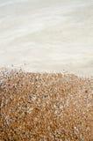 Nature contrastante Photographie stock libre de droits