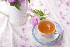 Nature Cornflower tea Stock Photos