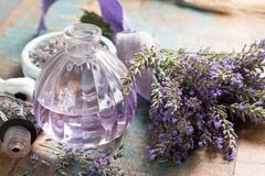 Nature cosmetics, handmade preparation of essential oils, parfums, creams, soaps from fresh and dried lavender flowers, French ar. Tisanal boutique home style royalty free stock photo