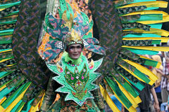 Nature costume carnival Stock Photography