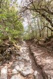 Nature of the Crimea. Hiker travel. Rocky Royalty Free Stock Photo